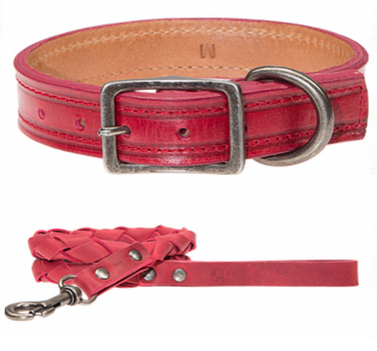 WILL Leather Leash & Colalr